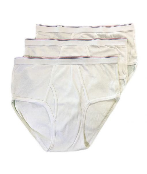 Fly Front Brief Panties